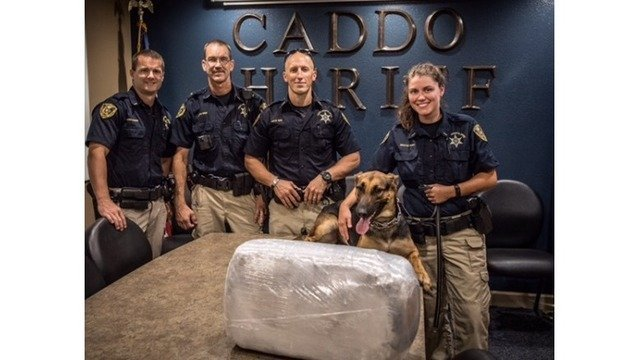 Caddo-K9-finds-drugs
