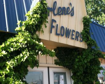 arlenes_flowers