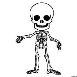 cartoon-skeleton-drawing-2